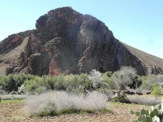 Habitat présaharien, jusqu'alors (2015) insoupçonné, dans la Haute Vallée de l'Oued Zegmouzen