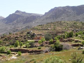 Espace de vol au Djebel Akdal (Photo Frédérique Courtin-Tarrier)