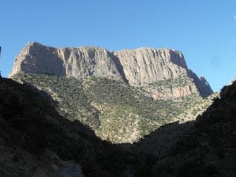 L'imposante falaise de Taghia qui domine la Haute Vallée de l'Asif Ahansal, dans le Massif du M'Goun (Haut Atlas), nouvelle localisation (2014) de M. deione, loin de son berceau rifain