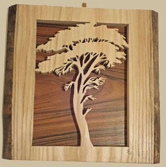 Le Pin parasol - Atelier Eclats de bois