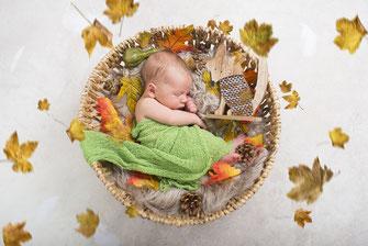 newborn bladeren