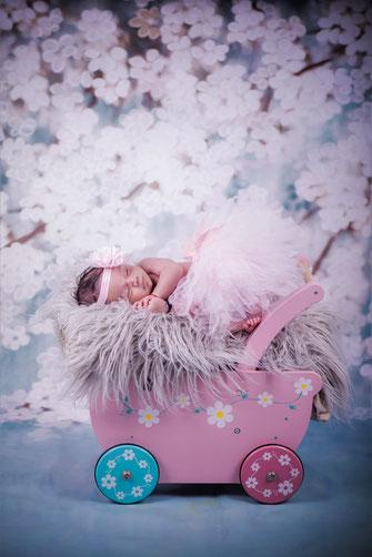 newborn in kinderwagen
