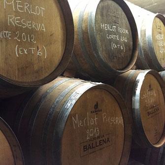 Alto de la Ballena Cuvée Reserva Tannat Viognier Merlot Cabernet Franc Uruguay Wein Rotwein Neue Welt Südamerika