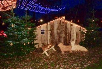 Ein Holzstall steht mit einer Lichterkette geschmückt auf dem Dorfplatz. Davor steht eine Krippe mit einem Schaf und einer liegenden Kuh aus Holz.