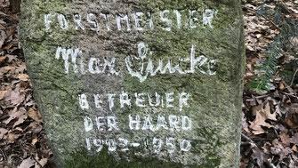 Gragstein Max Linke