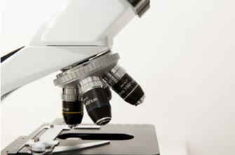 Das Foto zeigt ein Mikroskop.