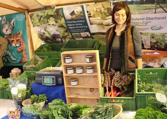 Marktstand der BioKräuterei Oberhavel mit junger Frau. Kollwitzmarkt