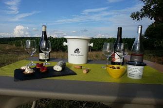 visite-dégustation-vignoble-oenologie-vin-insolite-original-Vouvray-Touraine-Vallee-Loire-Rendez-Vous-dans-les-Vignes-Myriam-Fouasse-Robert