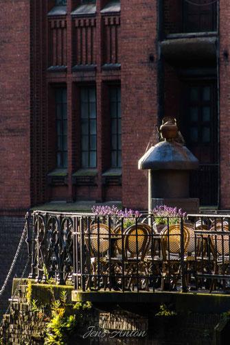 Lavendel Speicherstadt Fleetschloesschen Hamburg historisch Terrasse