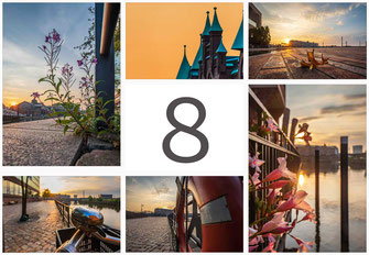 Bilder in der Übersicht für Monat August aus Hamburg
