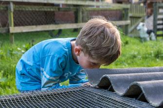 Junge sucht unter Dach nach Kaninchen