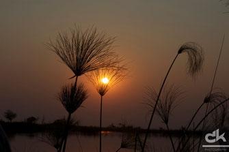 Sonnenuntergang beim Little Vumbua Camp