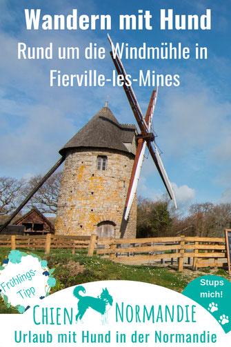Wandern mit Hund in der Normandie: Kleiner Rundweg um die Moulin à Vent auf dem Cotentin