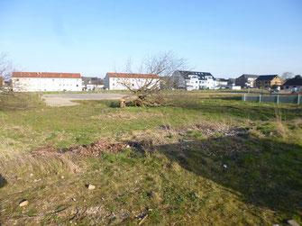 Grabungsfläche im Innenstadtbereich an der Kurt-Schuhmacher-Straße.
