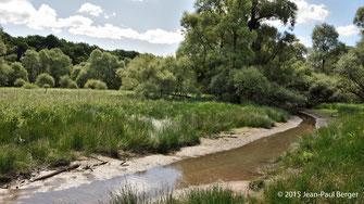 L'Auron, ruisseau qui alimente l'étang
