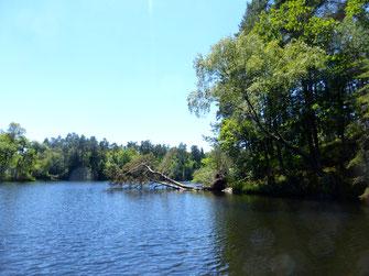 coin de pêche pour la carpe en Corrèze