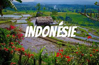 Bali, l'île authentique
