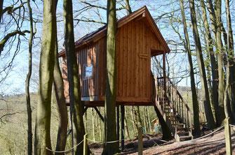 Baumhaus mit kahlen Bäumen.
