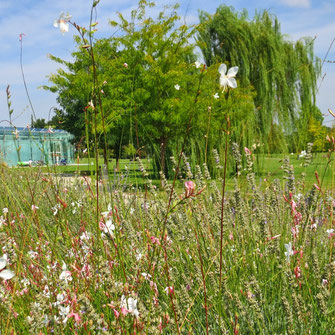 da3studio da3 studio architetto paesaggista venezia progetti giardini
