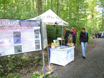 LBV-Stand auf dem Waldtag im Walderlebniszentrum Gramschatzer Wald
