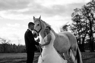 Hochzeit Wedding paar