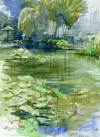 「蓮の池(サッポロビール園 2016年7月25日)F4