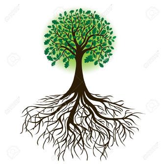 Les racines et les feuilles d'un arbre sont comme les ascendants et les descendants d'une généalogie...