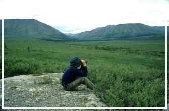 Alaska_2_Reisefotograf_Abenteurer_Jürgen_Sedlmayr_104