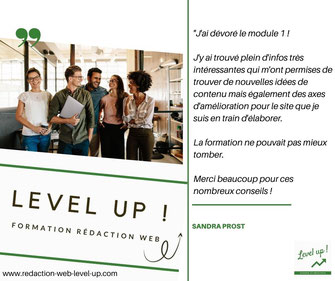 avis client formation rédaction web level up