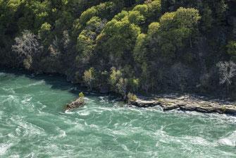 Niagara Whirlpool State Park
