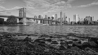 Lower Manhattan Skylines