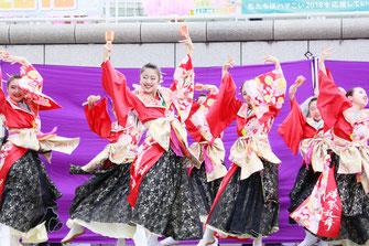 祭・WAIWAIよこはまの演技画像