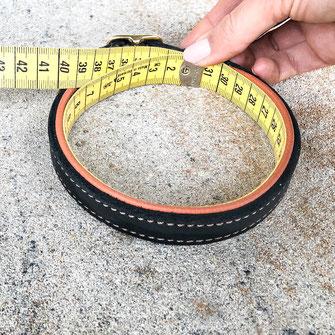 Hundehalsband Hundeleine Lederhalfter auf Maß