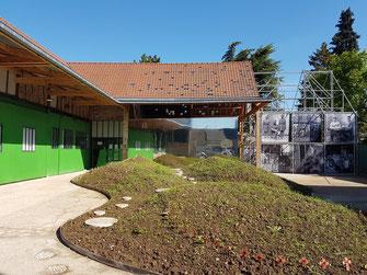 La cour et la grange restaurées