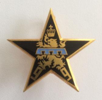 Insigne de la section d'éclaireurs-skieurs (S.E.S.) du 1er bataillon du 99e R.I.A. en 1951 (Coll. priv. 001)