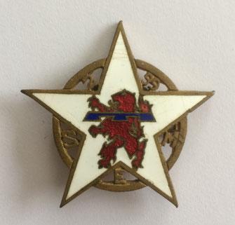 Insigne de la section d'éclaireurs de montagne (S.E.M.) du 2e bataillon du 99e R.I.A. en 1955 (Coll. priv. 001)