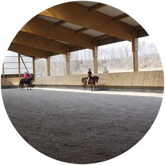 Pferdehof, Reiterhof, Aktivstall, Offenstall, Emmerting, Ribesmeier, Mitterlehner, Reithalle, Paddockboxen, Stall