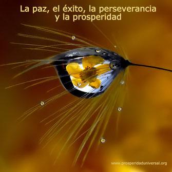 La Paz y el Éxito, la Perseverancia y Prosperidad: Serán tus compañeros inseparables en  toda la trayectoria de tu vida-PROSPERIDAD UNIVERSAL -