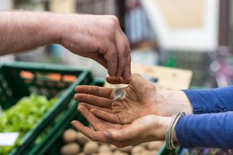 Finanzen als nachhaltiger Fotograf, Simon Veith Fotografie für Nachhaltigkeit