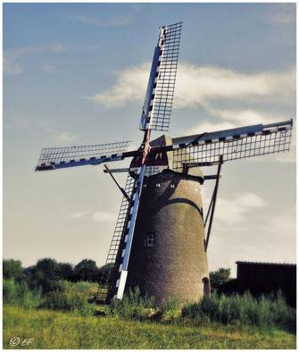 Die Waldfeuchter Mühle