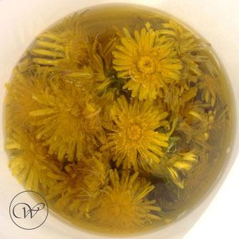 Löwenzahnblüten in Olivenöl