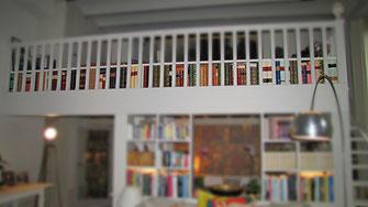 Faux books - Conti Borbone - Private house leather faux books