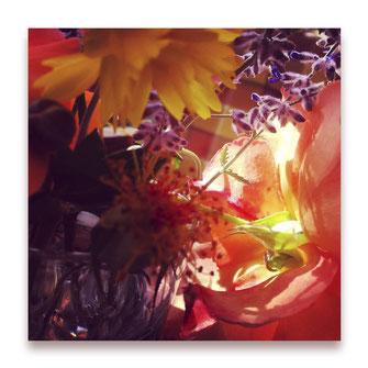 Farbtiefenrausch (Bild #013)