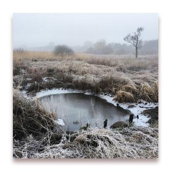 Stille Wasser (Bild #002)
