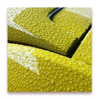 Gelbes im Regen (Bild #049)