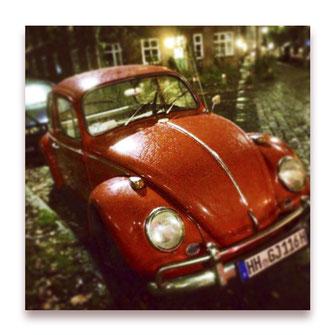 Käferglück (Bild #050)