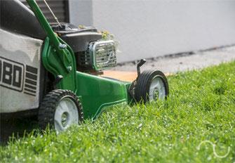 Pflege, Gartenpflege, Rasen, Rasenmähen, Grünanlagen, Grün, Pflanzen, Atmosphäre, Natur, Sommer, Garten