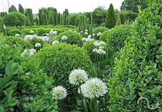 Deko, Kunst, Gartengestaltung, Gartendesign, Garten, Gartenpflege, Grünanlagen, Grün, Pflanzen, Atmosphäre, Natur