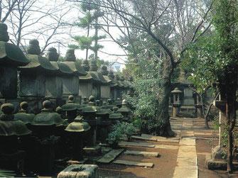 宗家墓所の写真