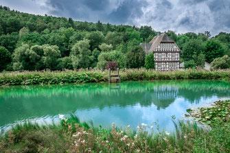 Landhaus am Waldrand mit Teich als Wandposter